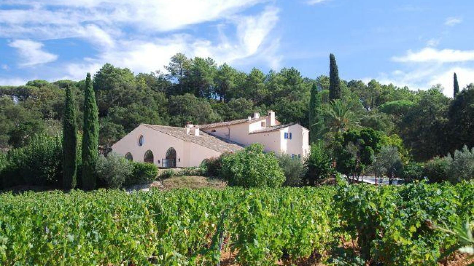 The vineyards of Saint-Tropez , flagship of the French Riviera