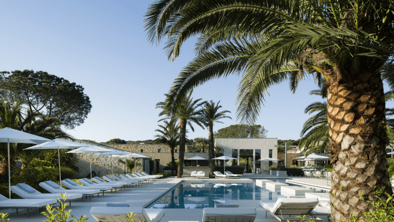 Meet Christophe Ponceau - Part 2 : The uniquely verdant atmosphere at the Sezz Saint-Tropez