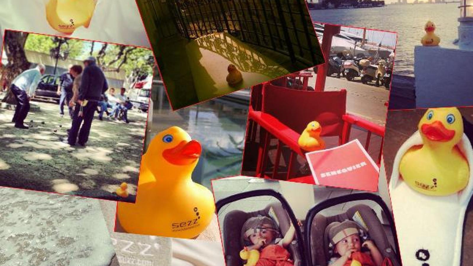 The Sezz Duck is an international superstar