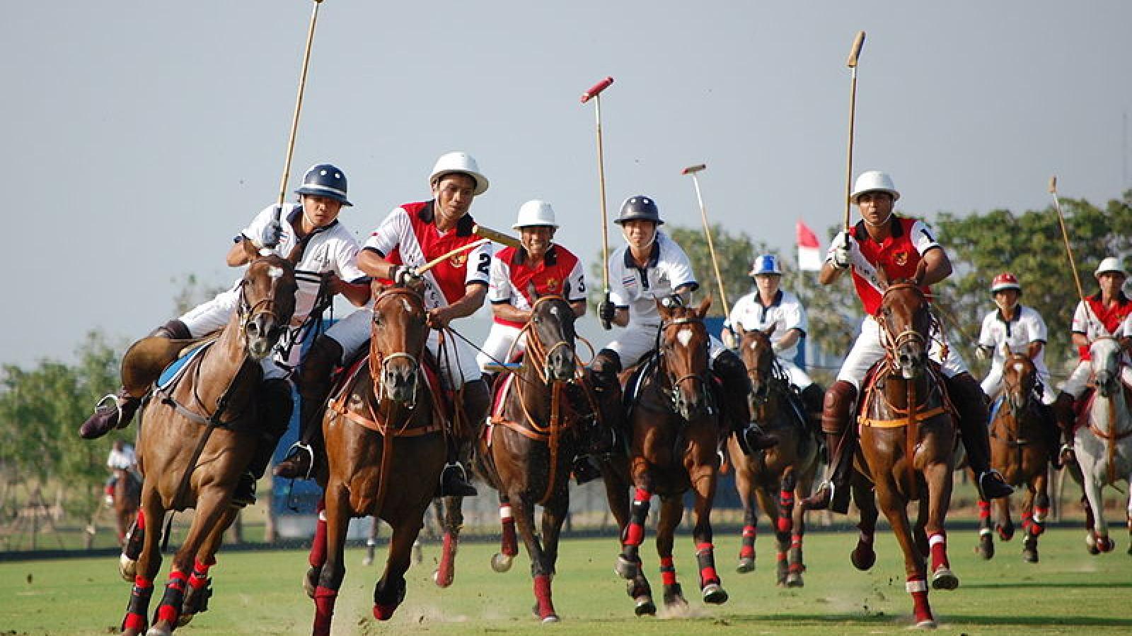 Embrace the polo culture of Saint-Tropez